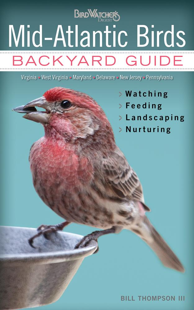 mid atlantic birds backyard guide watching feeding landscaping