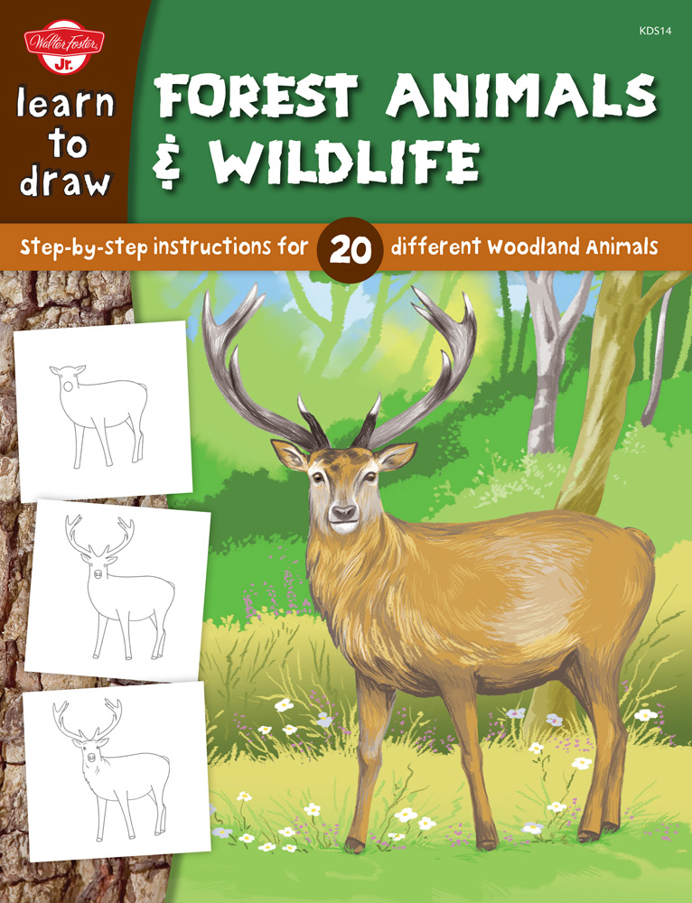 learn to draw forest animals amp wildlife