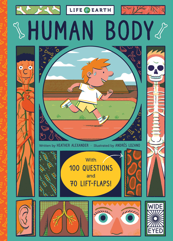 Life On Earth Human Body By Heather Alexander