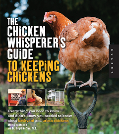 The Chicken Whisperer's Guide to Keeping Chickens