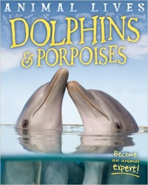 Dolphins and Porpoises