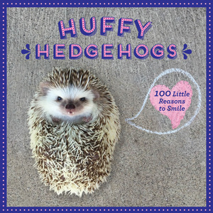 Hedgehog Wisdom Little Reasons to Smile