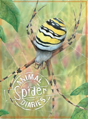 Animal Diaries: Spider