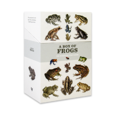 A Box of Frogs