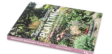 Drought-Resistant Planting Lessons from Beth Chatto's Gravel Garden